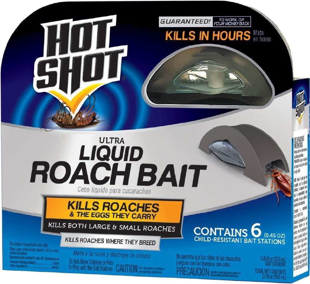 Best Roach Killer On The Market 2020 Reviews
