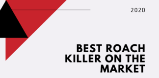 Best Roach Killer On The Market